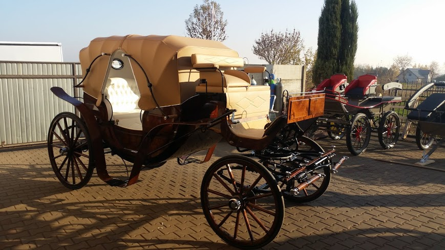 Vis 224 Vis Vv Luxury Pairs Carriage Suit 15 To 16 2hh