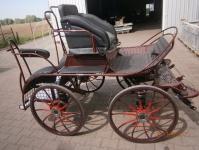 1631-sh2-spotive-horse-pair
