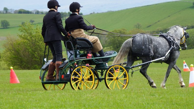 FR120  Microfox Single/ Pair Shetland Pony Three Phase Competition Carriage  9.2-13 hh From £2756