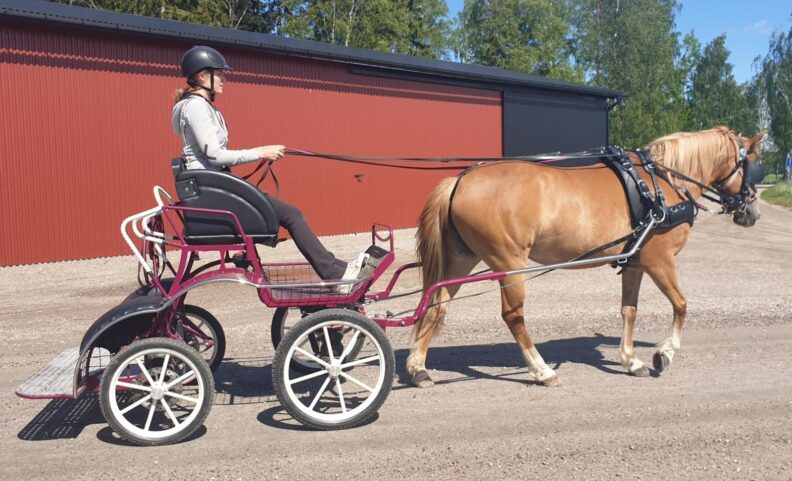 MC 110 Lightweight Competition Carriage for 12.3 to 14.1hh Basic Model only 140Kg. £3602 + VAT